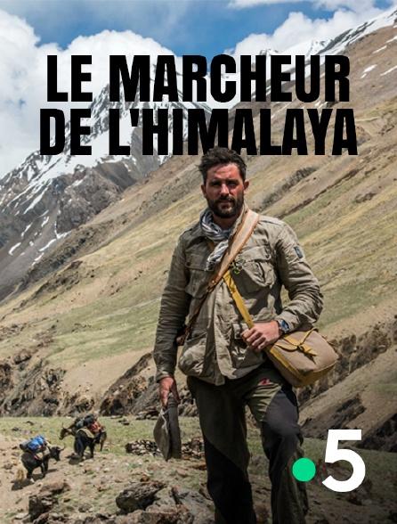 France 5 - Le marcheur de l'Himalaya