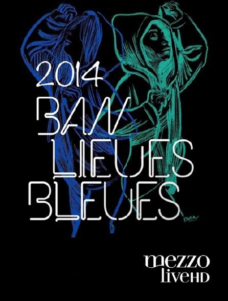 Mezzo Live HD - Banlieues bleues 2014