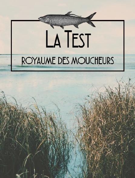 La Test, royaume des moucheurs