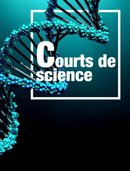 Courts de science