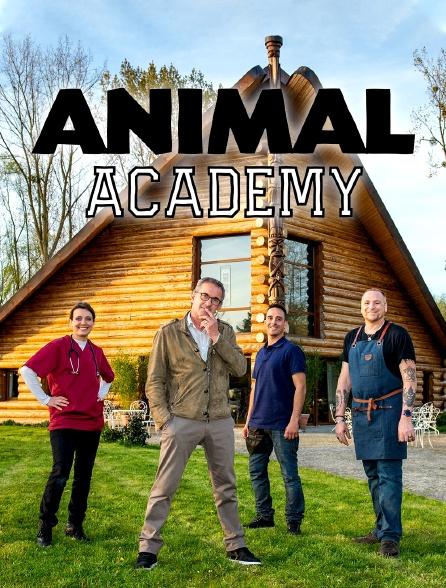 Animal Academy