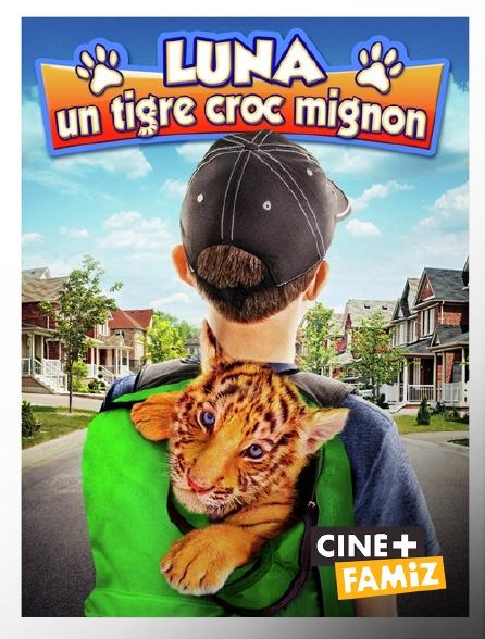 Ciné+ Famiz - Luna, un tigre croc mignon