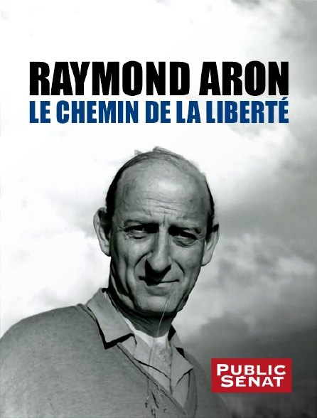 Public Sénat - Raymond Aron : le chemin de la liberté