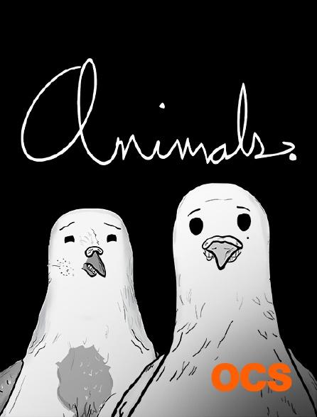 OCS - Animals