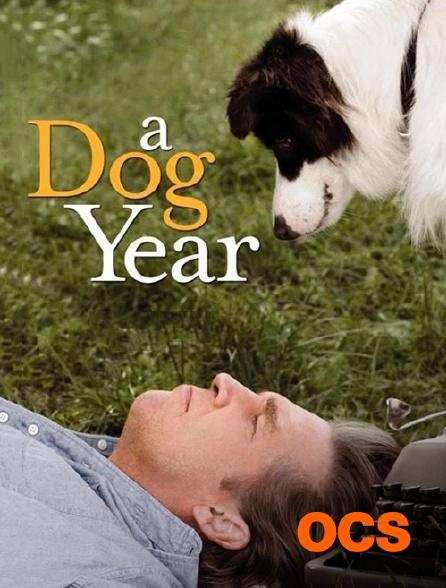 OCS - A Dog Year