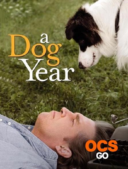 OCS Go - A Dog Year