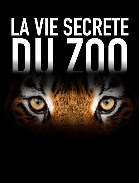 La vie secrète du zoo