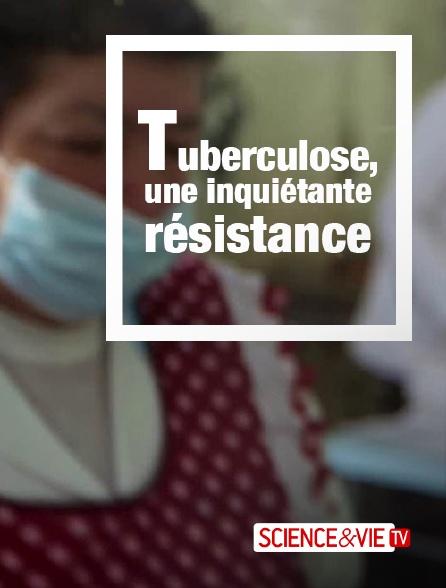 Science et Vie TV - Tuberculose, une inquiétante résistance
