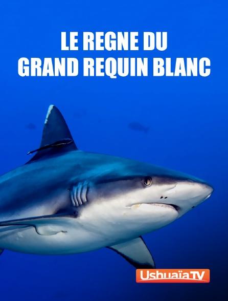 Ushuaïa TV - Le règne du grand requin blanc
