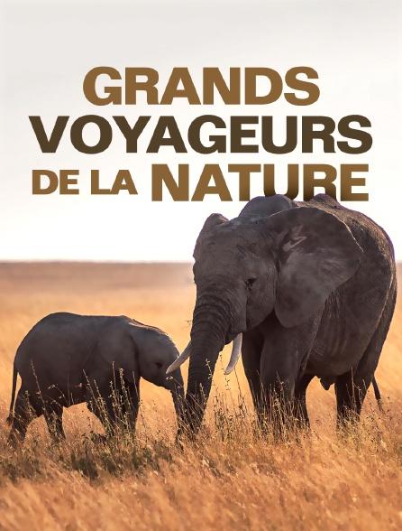 Grands voyageurs de la nature