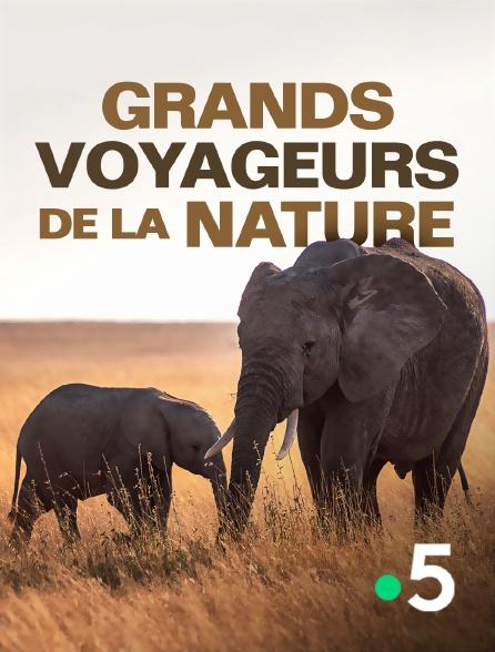 France 5 - Grands voyageurs de la nature