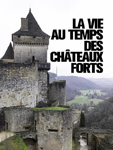 La vie au temps des châteaux forts