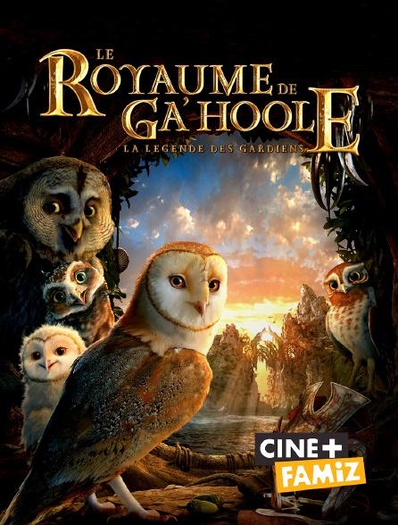 Ciné+ Famiz - Le royaume de Ga'Hoole : la légende des gardiens