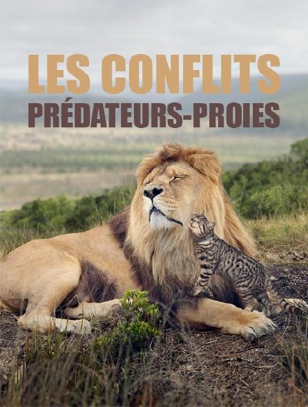 Les conflits prédateurs-proies