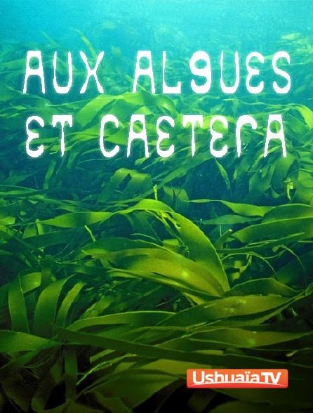 Ushuaïa TV - Aux algues et caetera