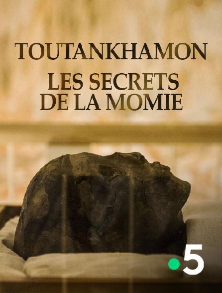 France 5 - Toutankhamon, les secrets de la momie