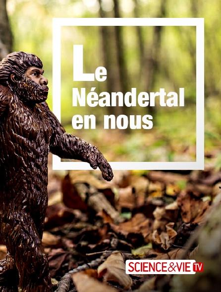 Science et Vie TV - Le Néandertal en nous