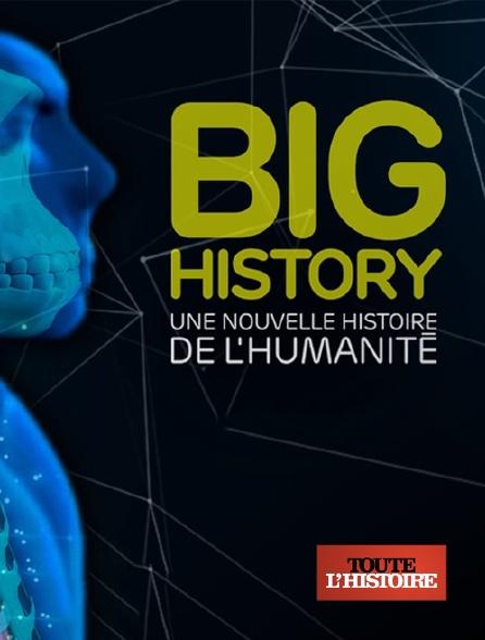 Toute l'histoire - Big history : une nouvelle histoire de l'humanité
