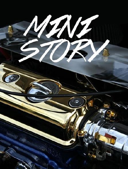 Mini Story
