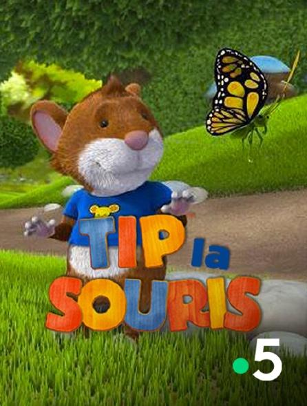 France 5 - Tip la souris