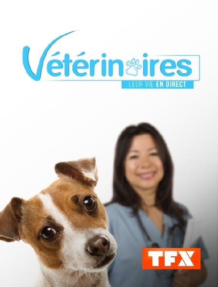 TFX - Vétérinaires, leur vie en direct