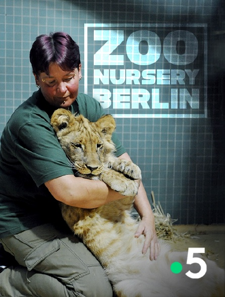 France 5 - Zoo nursery Berlin