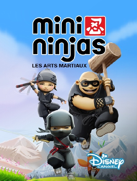 Disney Channel - Les arts martiaux des mini-ninjas