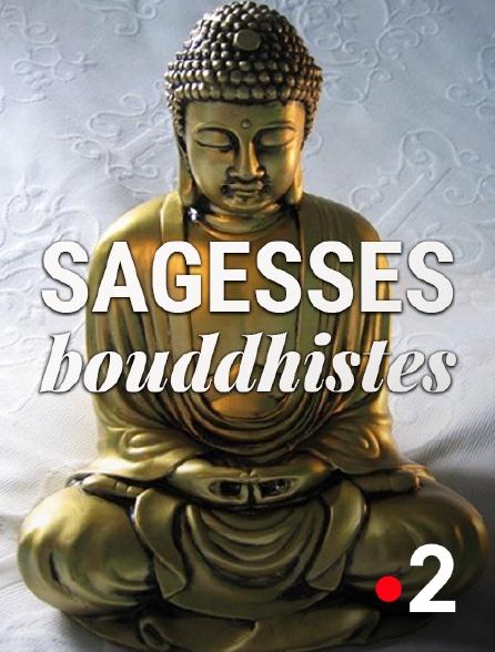 France 2 - Sagesses bouddhistes