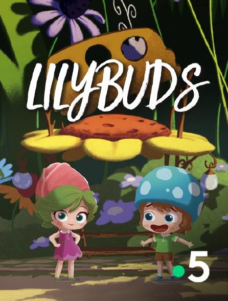 France 5 - Lilybuds