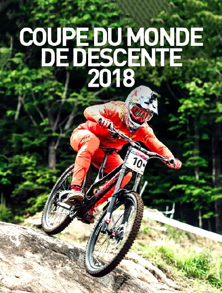 Coupe du monde de descente 2018