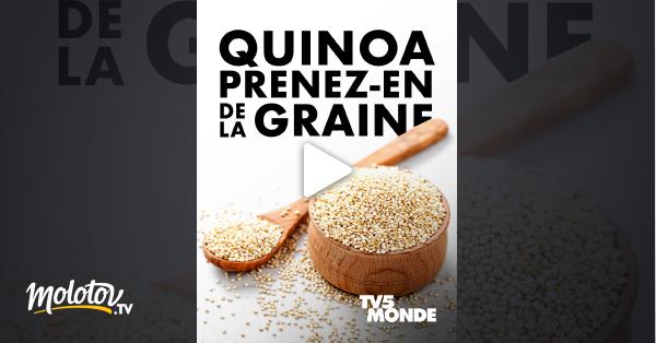 Quinoa, prenez-en de la graine ! en Streaming Replay sur TV5MONDE - Molotov.tv