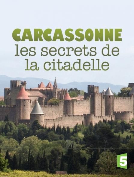 regardez carcassonne les secrets de la citadelle sur france 5 avec molotov. Black Bedroom Furniture Sets. Home Design Ideas